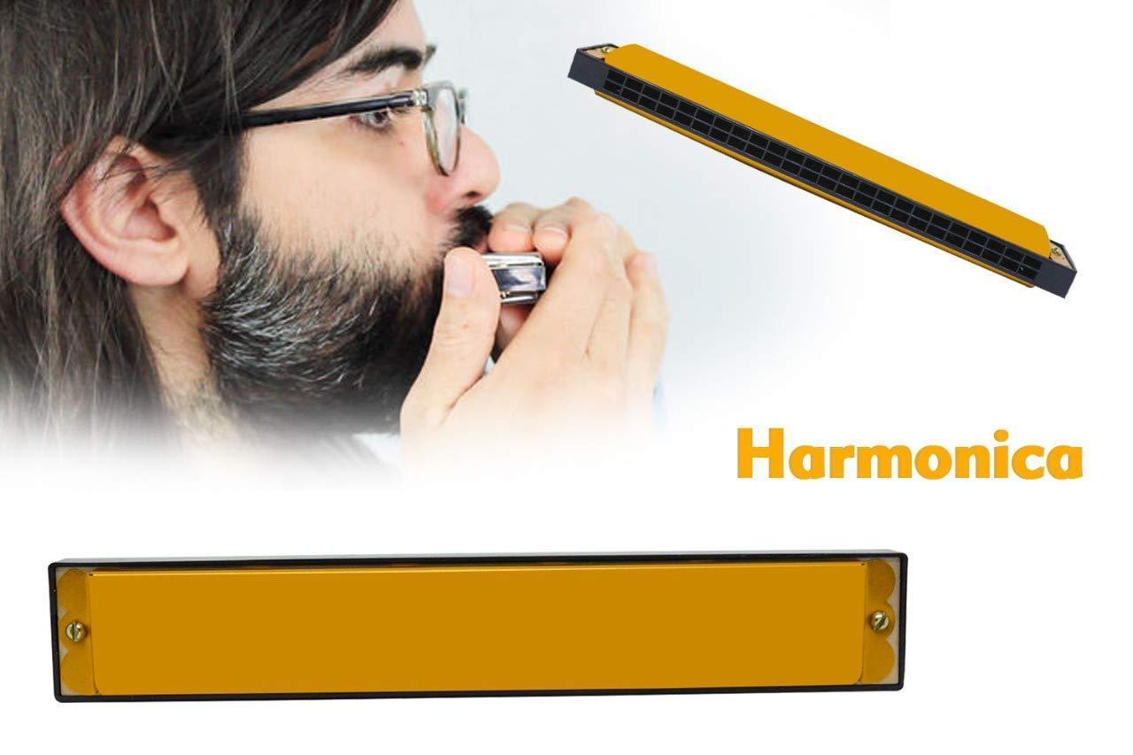 Harmonica (24 Hole) - Unnati Enterprises