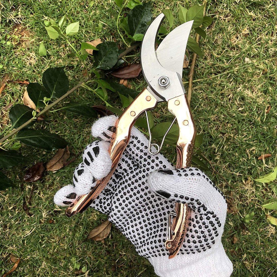 Garden Shears Pruners Scissor - Unnati Enterprises